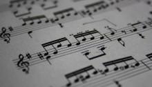 Die Welt der Musiker